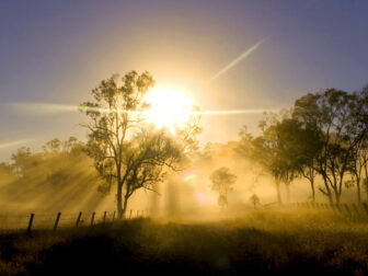 Outback-landscape-with-mist-at-sunset-Toowoomba