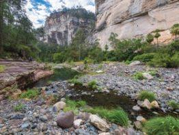 Carnarvon Gorge Mini Break