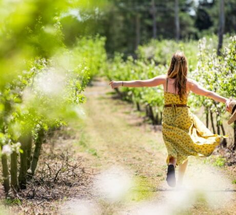 Person-Strolling-through-Vineyard-Queensland