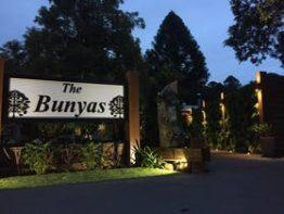 The Bunya's Accommodation