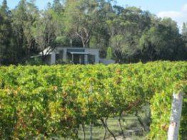 Just Red Wines Vineyard Cabins