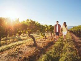 Granite Belt Wine Trail