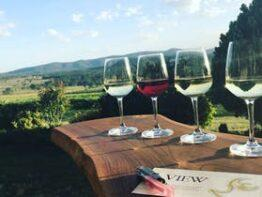 View Wine by Sancerre Estate