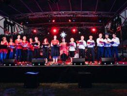 Warwick's Carols in the Park 2020