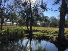 Galbraith Bush Camping – South Burnett