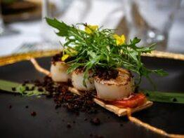 5-Senses Degustation Dinner, 5-Star Wines and Divine Food/Wine/Vine Experience