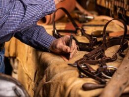 Bridle Making Workshop (Two Days)